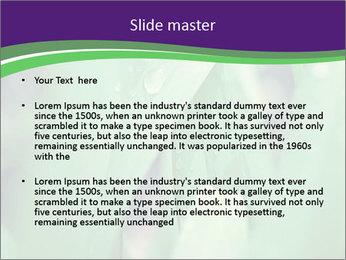 0000078034 PowerPoint Templates - Slide 2