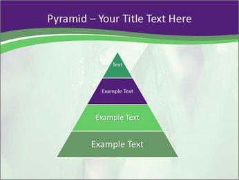 0000078034 PowerPoint Templates - Slide 30