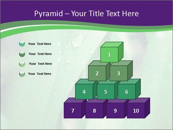 0000078034 PowerPoint Templates - Slide 31