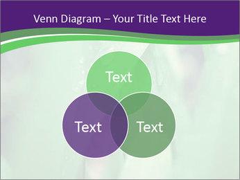 0000078034 PowerPoint Templates - Slide 33