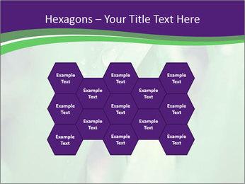 0000078034 PowerPoint Templates - Slide 44
