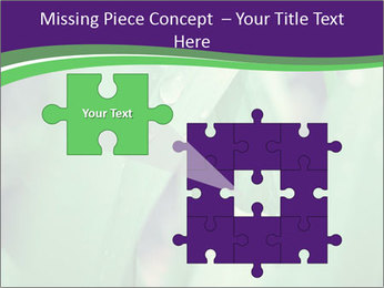 0000078034 PowerPoint Template - Slide 45