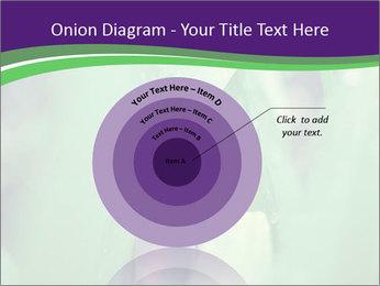 0000078034 PowerPoint Templates - Slide 61