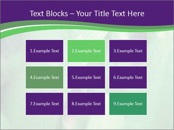 0000078034 PowerPoint Templates - Slide 68