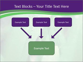 0000078034 PowerPoint Templates - Slide 70