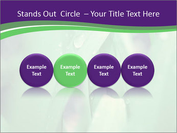 0000078034 PowerPoint Template - Slide 76