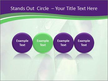 0000078034 PowerPoint Templates - Slide 76