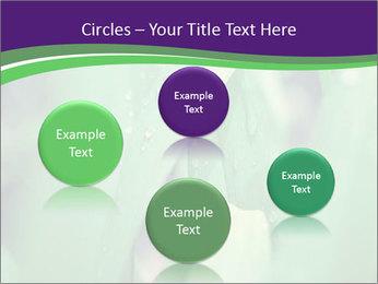0000078034 PowerPoint Templates - Slide 77