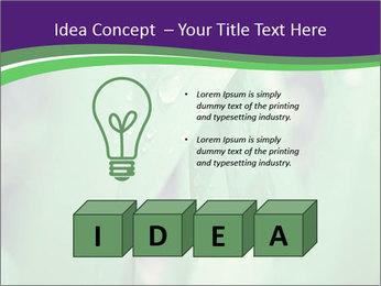 0000078034 PowerPoint Templates - Slide 80