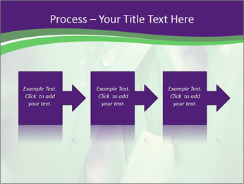 0000078034 PowerPoint Templates - Slide 88