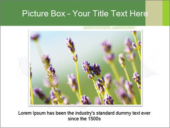 0000078035 PowerPoint Templates - Slide 15
