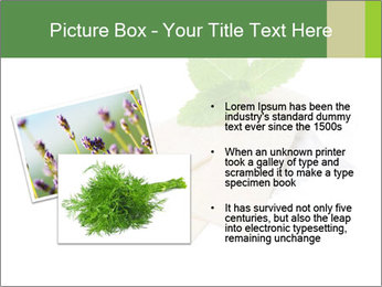 0000078035 PowerPoint Templates - Slide 20