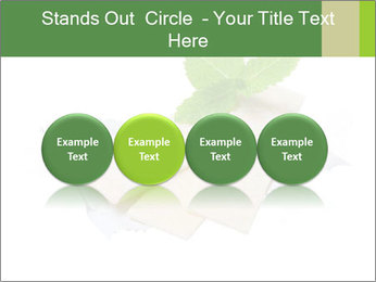 0000078035 PowerPoint Templates - Slide 76