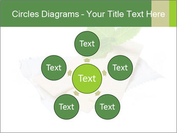 0000078035 PowerPoint Templates - Slide 78