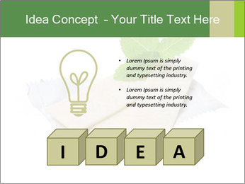 0000078035 PowerPoint Templates - Slide 80