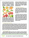 0000078035 Word Templates - Page 4
