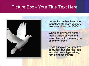 0000078037 PowerPoint Template - Slide 13