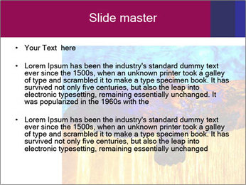 0000078037 PowerPoint Template - Slide 2