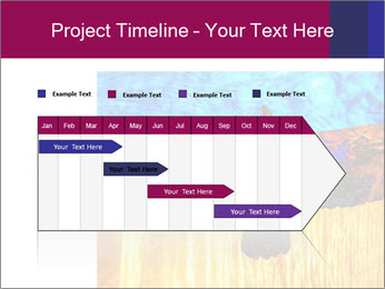 0000078037 PowerPoint Template - Slide 25