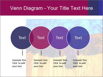 0000078037 PowerPoint Template - Slide 32