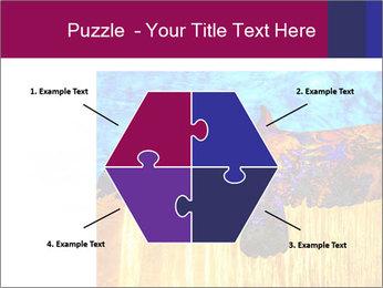 0000078037 PowerPoint Template - Slide 40