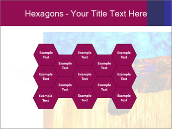 0000078037 PowerPoint Template - Slide 44