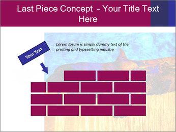 0000078037 PowerPoint Template - Slide 46