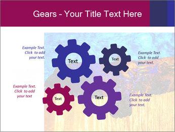 0000078037 PowerPoint Template - Slide 47