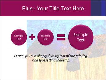 0000078037 PowerPoint Template - Slide 75