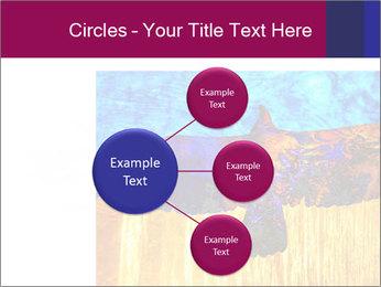 0000078037 PowerPoint Template - Slide 79