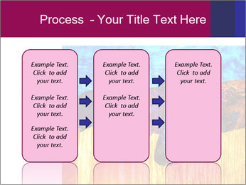 0000078037 PowerPoint Template - Slide 86