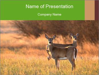0000078039 PowerPoint Templates - Slide 1