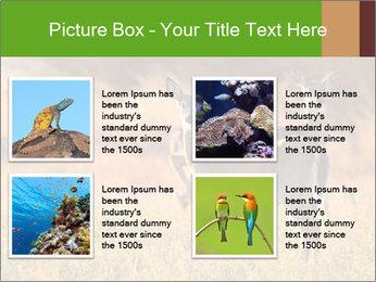 0000078039 PowerPoint Templates - Slide 14