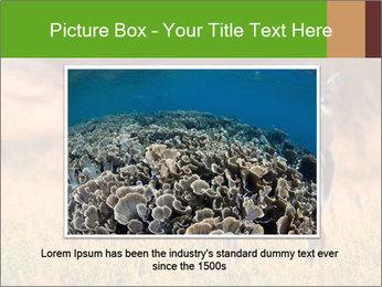 0000078039 PowerPoint Templates - Slide 15