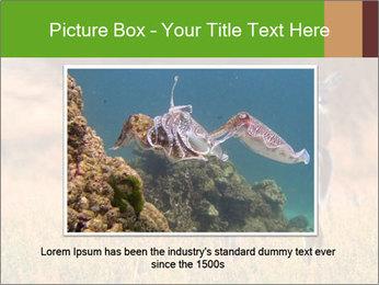 0000078039 PowerPoint Templates - Slide 16