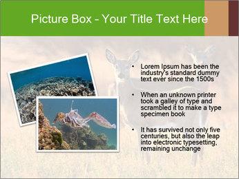 0000078039 PowerPoint Templates - Slide 20