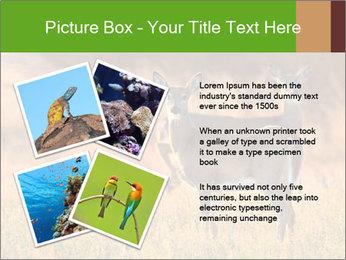 0000078039 PowerPoint Templates - Slide 23