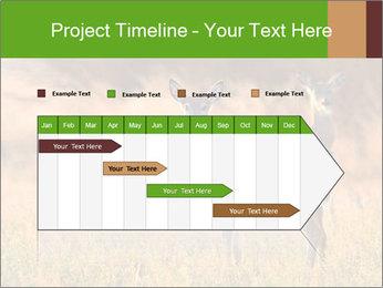 0000078039 PowerPoint Templates - Slide 25