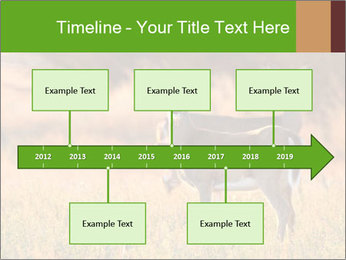 0000078039 PowerPoint Templates - Slide 28