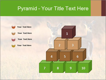 0000078039 PowerPoint Templates - Slide 31