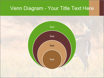 0000078039 PowerPoint Templates - Slide 34