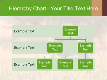 0000078039 PowerPoint Templates - Slide 67