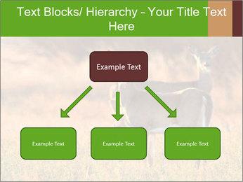 0000078039 PowerPoint Templates - Slide 69