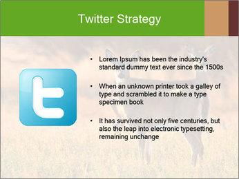 0000078039 PowerPoint Templates - Slide 9