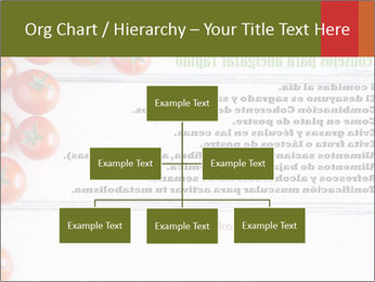 0000078043 PowerPoint Templates - Slide 66