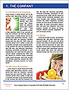 0000078044 Word Template - Page 3