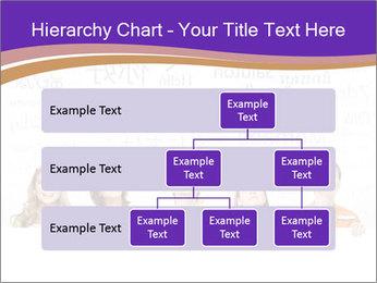 0000078050 PowerPoint Template - Slide 67