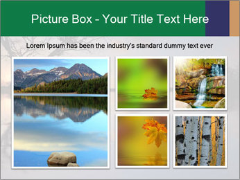 0000078062 PowerPoint Templates - Slide 19