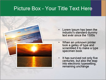 0000078062 PowerPoint Templates - Slide 20