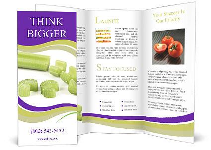0000078073 Brochure Templates